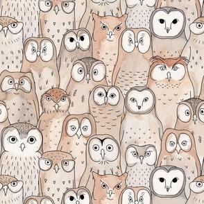 owls in brown
