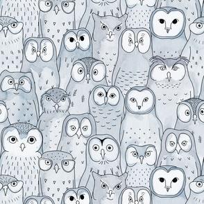 owls in blue