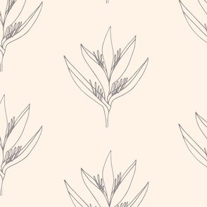 Large// Heliconia Psittacorum Flower Outline - Peach & Grey