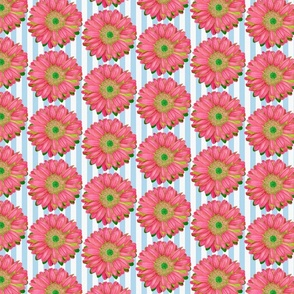 Pink Gerbera Daisies on Blue and White Stripes - Quarter Drop Repeat (small)