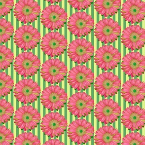 Pink Gerbera Daisies on Green Stripes - Quarter Drop Repeat (small)