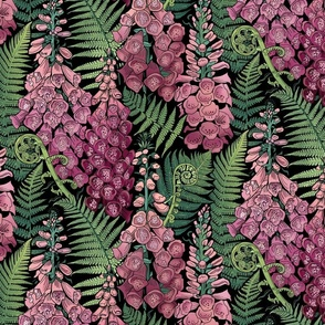 Ferns and Foxgloves