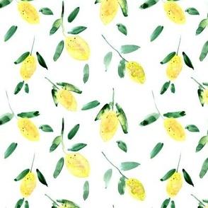 lemon sorbet - sunny summer lemons - juicy citrus a125-1