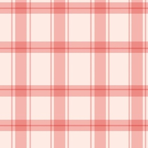 Gingham Check in Pink