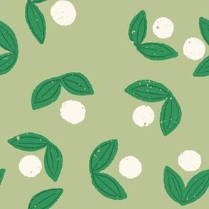 Sweet Berry in Green