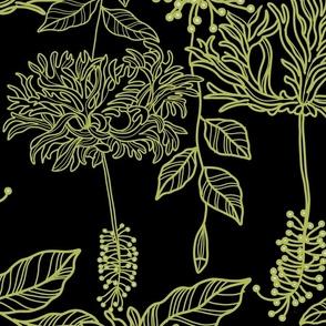 LANTERN HIBISCUS GREEN BLACK
