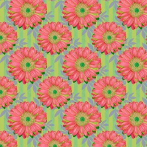 Pink Gerbera Daisies on Green Stripes with Leaves - half step repeat (Large)