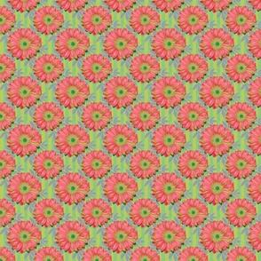 Pink Gerbera Daisies on Green Stripes with Leaves - half step repeat (medium)