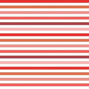 Small Red Orange Pink Stripes Fall Stripes Christmas Stripes