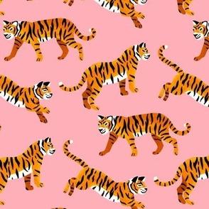 Bengal Tigers - Peachy Pink - Medium Scale