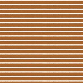 brown cream stripe