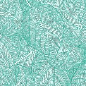 leaves_in_teal_green