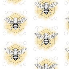 honey bee hexagons