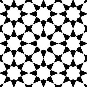 01198834 : S84E2 : black + white