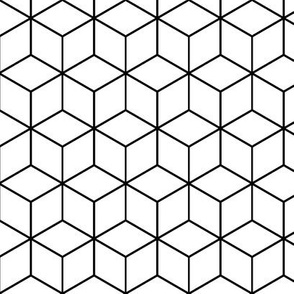 01198992 : hexagonal rhombus : outline