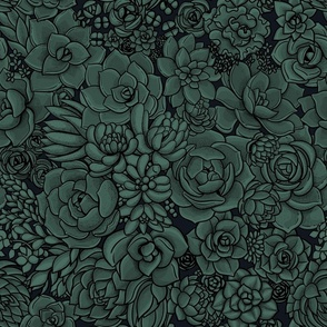 Night Succulent garden- pine and graphite