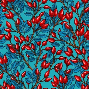 Rose hips, red and blue