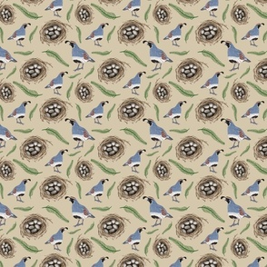 Gambel's Quail and Eggs Sonoran Desert Critter Pattern