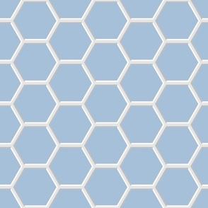 Blue-White Hexagons