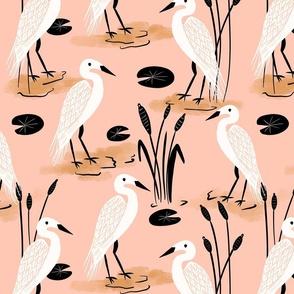cranes water birds flightless birds
