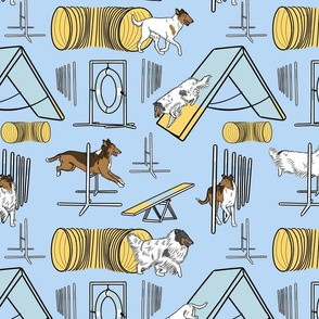 Simple assorted Collie agility dogs - blue