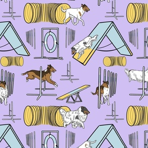 Simple assorted Collie agility dogs - purple