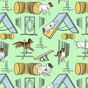 Simple assorted Collie agility dogs - green