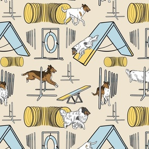 Simple assorted Collie agility dogs - tan
