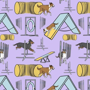 Simple Smooth Collie agility dogs - purple