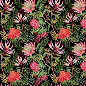 Painted Protea black small