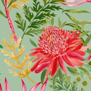 Painted Protea sage large