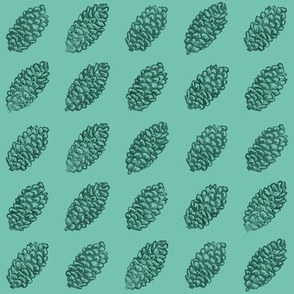 spruce cones in rows - forest on bright mint green