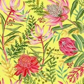Painted Protea lemon