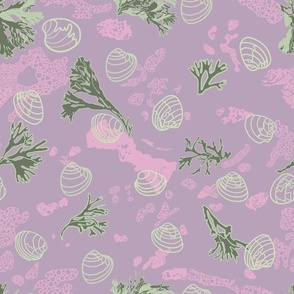 Light Green Shells with Artichoke Seaweed on Lilac and Pink