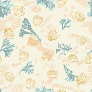 Flax Shells and verdigis and baby blue kelp on Cornsilk