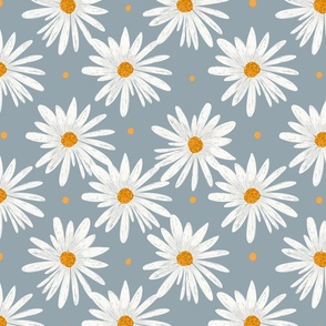 daisies on grey