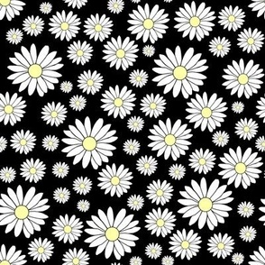 Daisy Chain in Black as Night