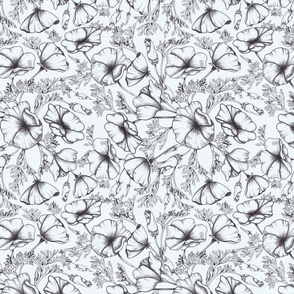 Black and white poppies drawing