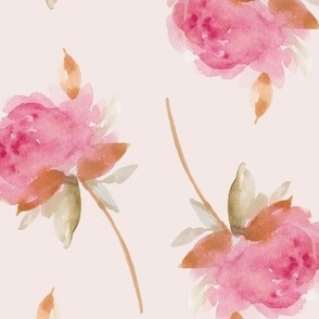 Beautiful Large Pink Roses on Blush