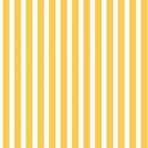 Goldenrod and White Stripes
