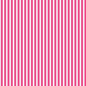 Bright Pink and White Narrow Stripes