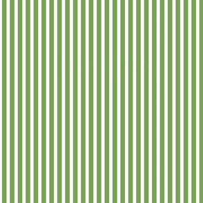 Moss Green and White Narrow Stripes