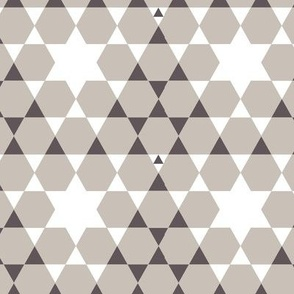 cestlavivid_pine_star_neutral
