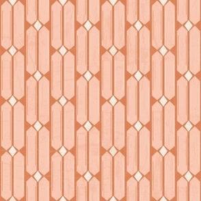 Terracotta and blush 3-nanditasingh