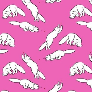 Cats VS Laser Dots on Pink