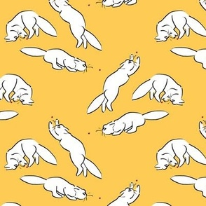 Cats VS Laser Dots on Yellow