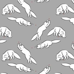 Cats VS Laser Dots on Gray