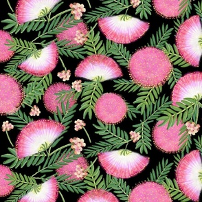 Pink Mimosa Scattered Floral on Black Lg. Scale