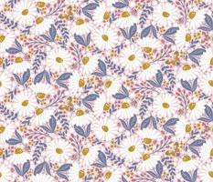 Daisies Bloom