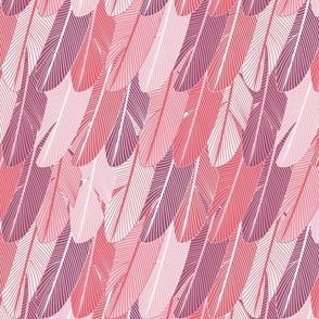 Plume flamingo